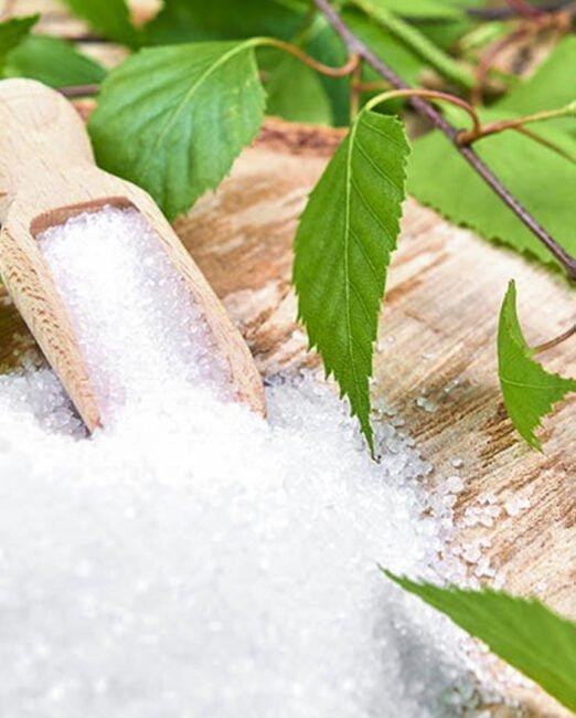 Azúcar de abedul, Xilitol
